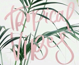 wallpaper, tropical, and vibes image