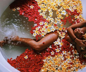 flowers, bath, and red image