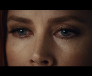 Amy Adams, nocturnal animals, and susan and tony image