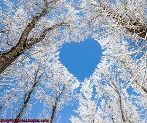 beautiful, hearts, and nature image
