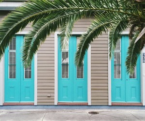 blue, house, and palms image