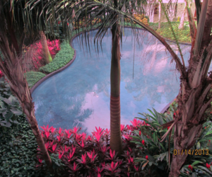 holidays, landscapes, and swimming pool image