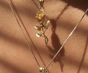 gold, necklace, and stem image