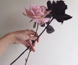 beauty, flowers, and hands image