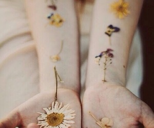 flowers, photography, and hipster image