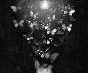 butterfly, art, and black and white image