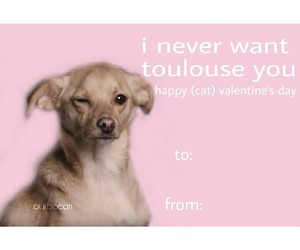 edit, valentines day, and ariana grande image