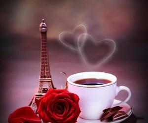 coffee, paris, and rose image