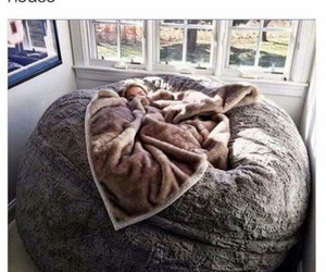 house, bed, and comfy image
