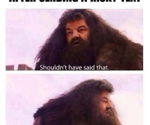 text, funny, and hagrid image