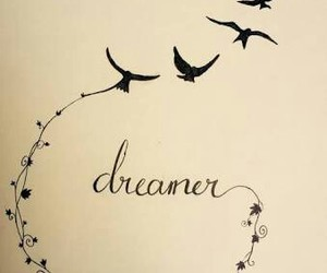 birds, dreamer, and draw image