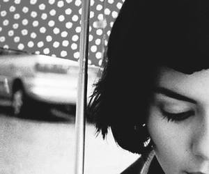 amelie, movie, and audrey tautou image