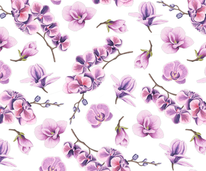 background, flowers, and orchid image