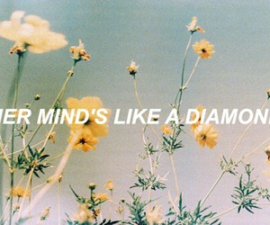 quotes, aesthetic, and diamond image