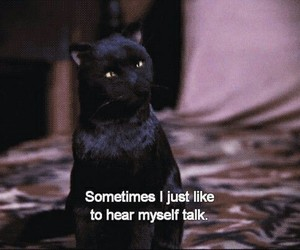 salem, cat, and sabrina the teenage witch image