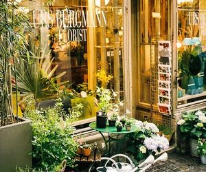 europe, flowers, and pretty image