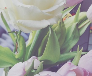 flowers, tulip, and pastel image