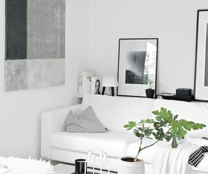 decor, white, and decoration image