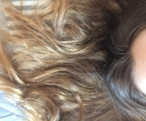 brown, ombré, and brownhair image