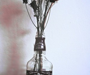 flowers, rose, and jack daniels image
