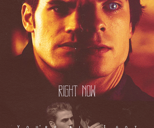 brothers, the vampire diaries, and damon image