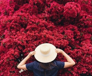 red, flowers, and aesthetic image