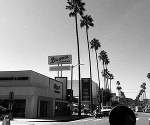 black and white, california, and los angeles image