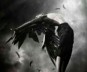 angel, book, and hush hush image