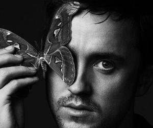 actor, harry potter, and tom felton image