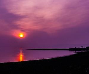 amber, purple, and reflecting image