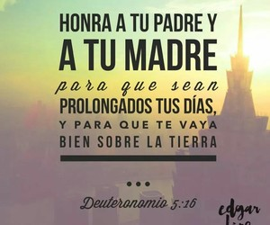 familia, family, and frases image