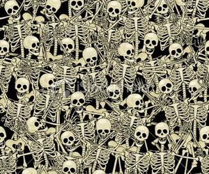 skeleton, background, and skull image