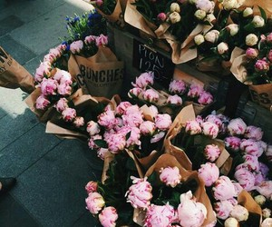 beautiful, inspirstion, and flowers image