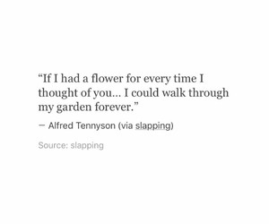 flowers, garden, and life image
