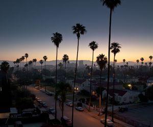 city, sunset, and night image