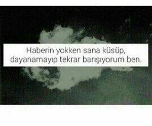 turkce, sözler, and sevgi image