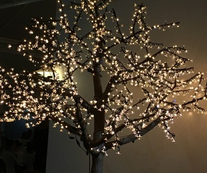 arbol, lights, and luces image