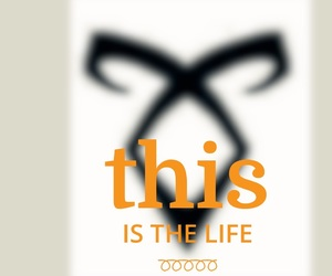 thelife and shadowhuntets image