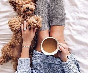 coffee, dog, and cute image