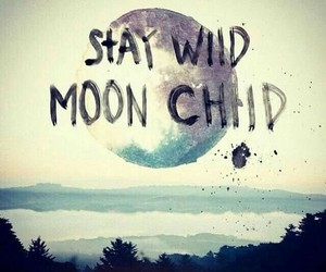 moon, quotes, and wild image