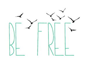 bird, free, and quote image