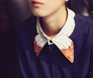 butterfly, collar, and collars image