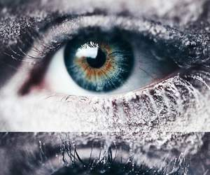 eyes, snow, and winter image