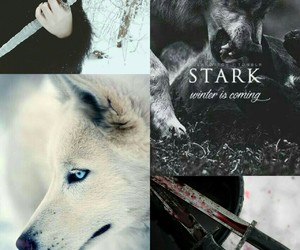 aesthetic, stark, and game of thrones image