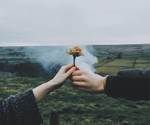 flowers, aesthetic, and hands image