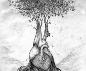 drawing, heart, and love image