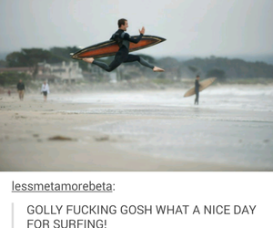 funny, tumblr, and surfing image