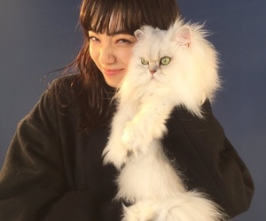 cat, girl, and 小松菜奈 image