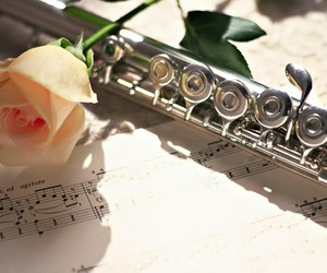 flute, music, and rose image