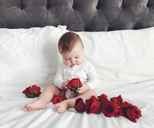 baby, cute, and roses image
